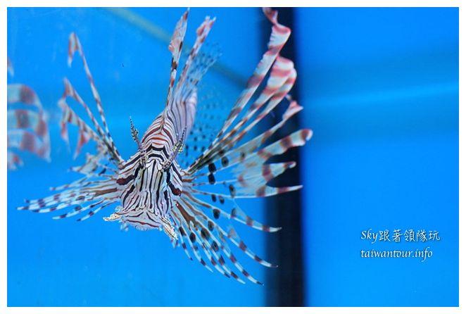 七星柴魚博物館05713