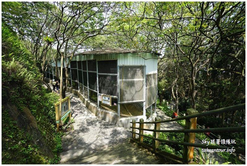 南投景點推薦鳳凰谷鳥園溜滑梯瀑布國立自然科學博物館DSC00279_结果