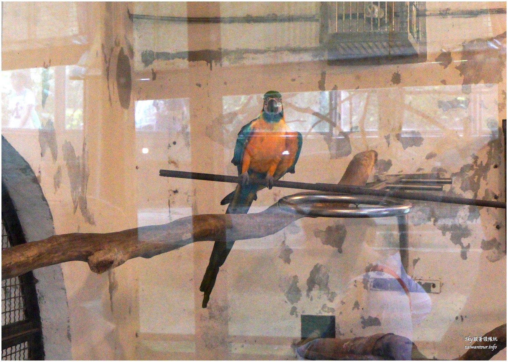 南投景點推薦鳳凰谷鳥園溜滑梯瀑布國立自然科學博物館DSC00297_结果