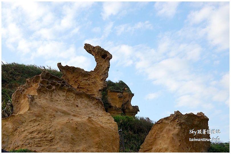 台北景點推薦野柳海洋公園DSC03573