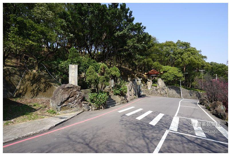 台北景點推薦龜山壽山巖觀音廟櫻花03697