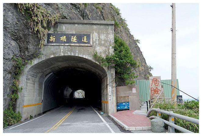 台東新豐隧道親不知子04217