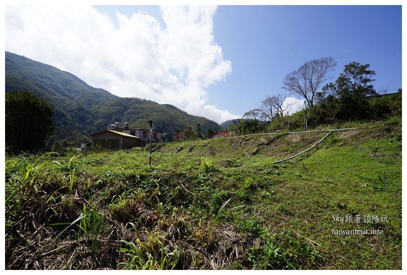 新竹景點推薦尖石鄉那羅部落香草青蛙石02199