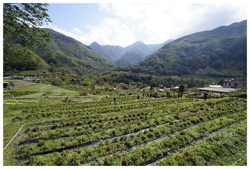 新竹景點推薦尖石鄉那羅部落香草青蛙石02251