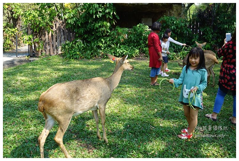 泰國親子旅遊綠山動物園kheow kheow00086