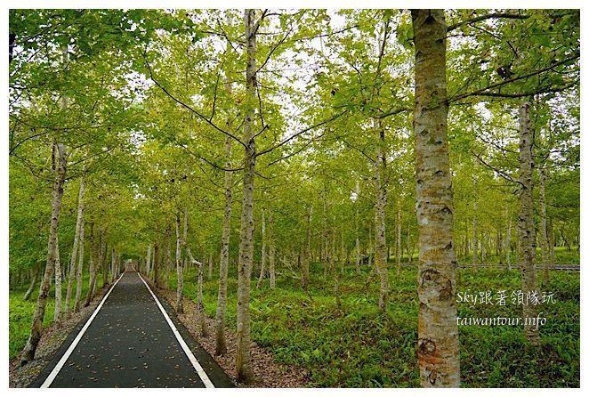 花蓮光復鄉大農大富平地森林遊樂區05539