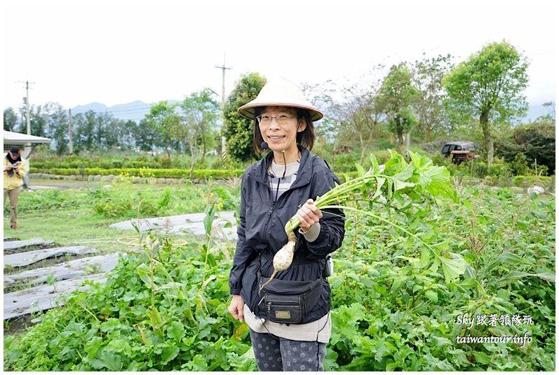 花蓮行程推薦養和屋活動柚遊自在柚來野餐趣DSC06350_结果