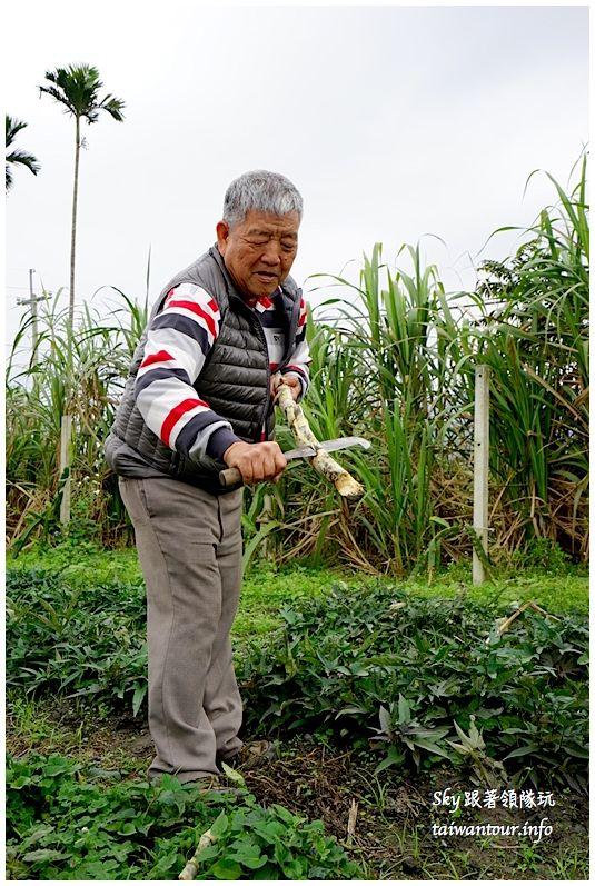 花蓮瑞穗二日遊【柚來野餐趣-養和屋】柚子花開