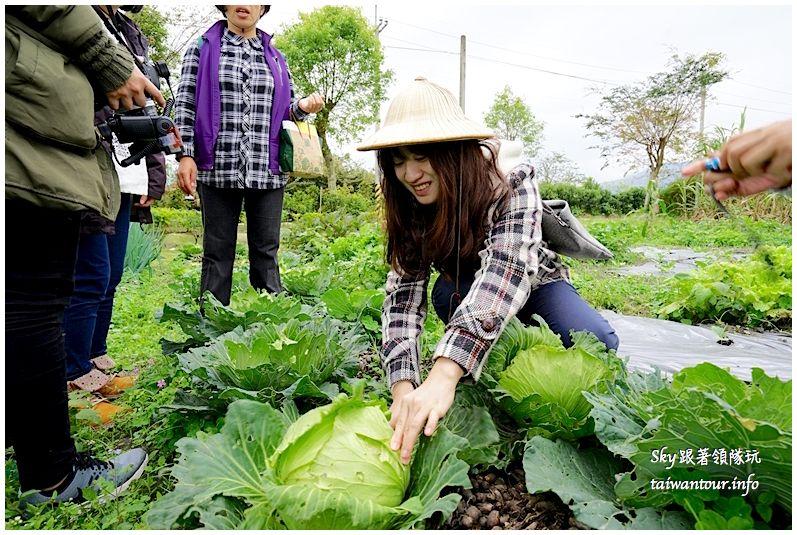 花蓮行程推薦養和屋活動柚遊自在柚來野餐趣DSC06365_结果