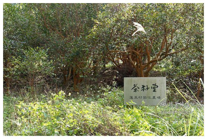 苗栗南庄景點蓬萊自然生態園區42湧泉八卦力05282