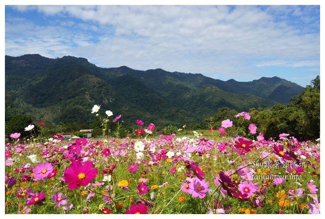 苗栗南庄景點蓬萊自然生態園區42湧泉八卦力05299