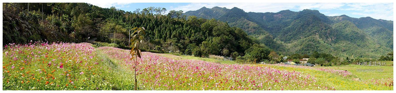 苗栗南庄景點蓬萊自然生態園區42湧泉八卦力05307