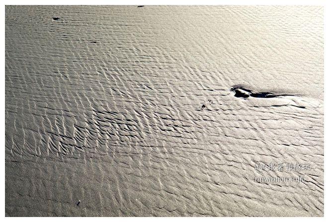 都歷木頭魚沙灘04649