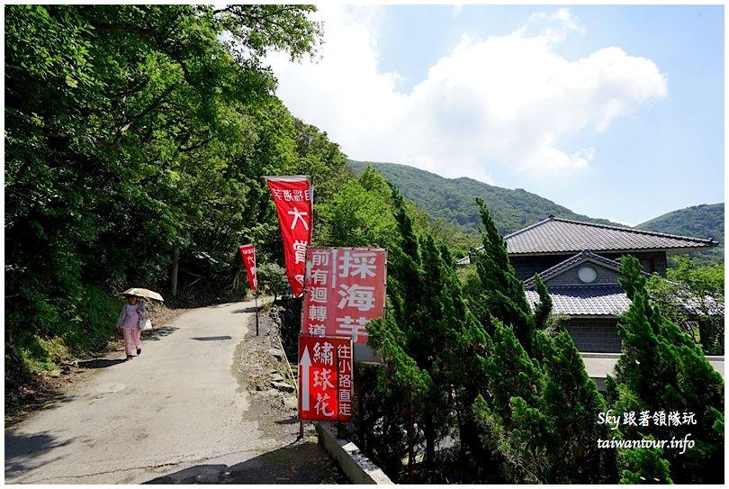 陽明山竹子湖繡球花大賞園DSC02706