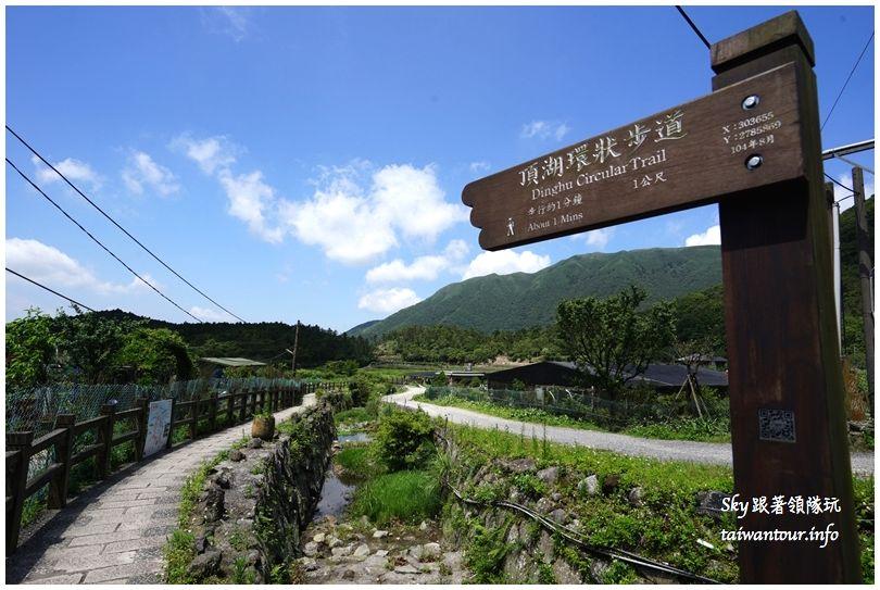 陽明山竹子湖繡球花大賞園DSC02848