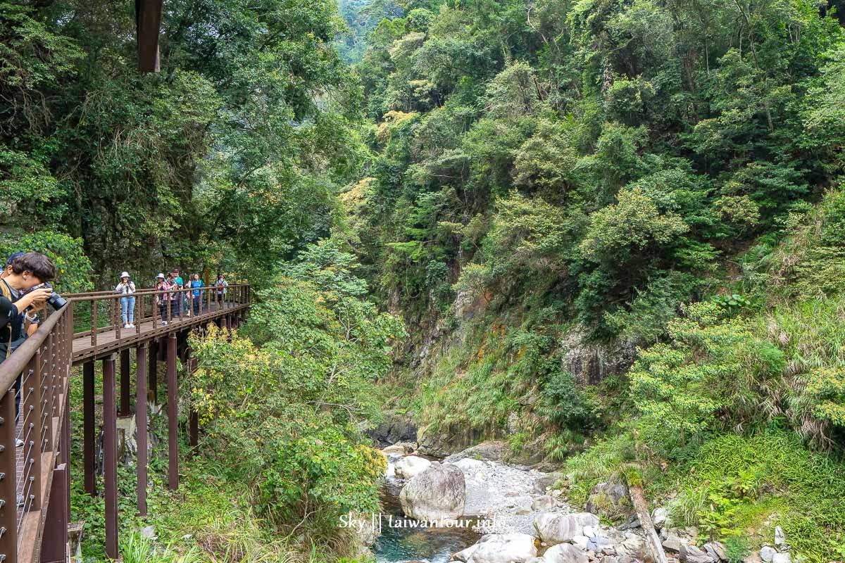 台中景點推薦【八仙山森林遊樂區】親子景點.和平天空步道