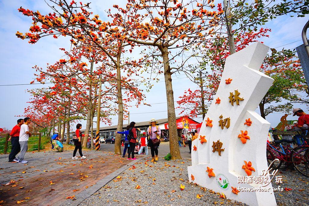 2021【林初埤木棉道】台南景點推薦白河木棉花節