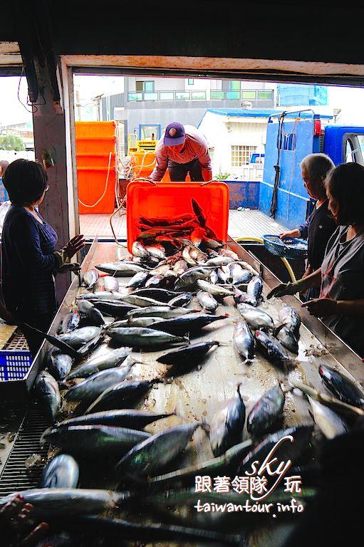 花蓮半日遊【洄遊吧】必玩定置漁場洄遊潮體驗