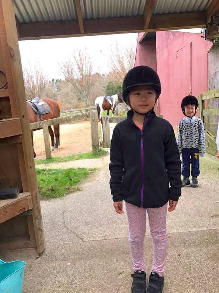 紐西蘭景點推薦-羅托魯瓦Rotorua最大馬場【The farmhouse Rotorua】