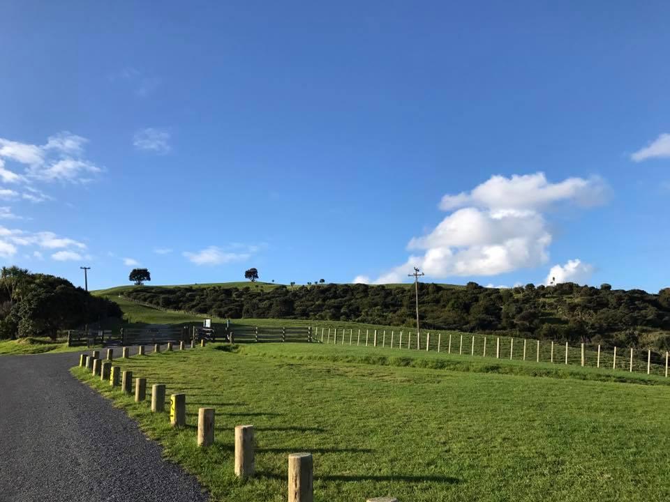 紐西蘭景點推薦-滿地的生蠔【Shakespear park莎士比亞公園】