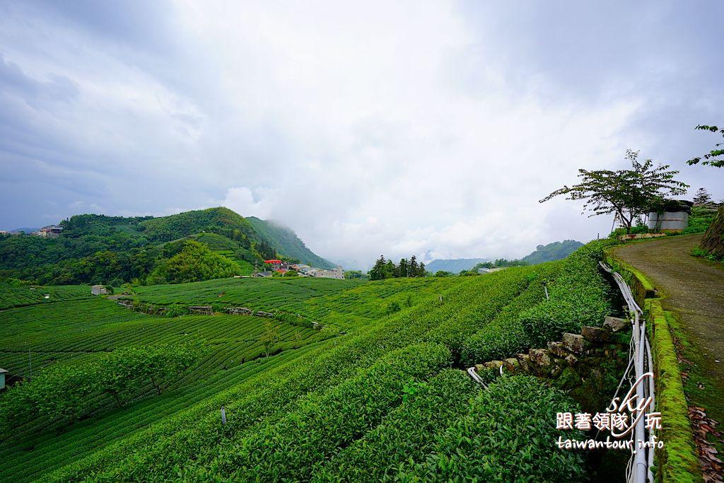 嘉義景點推薦-竹崎石卓茶席體驗【林園製茶】