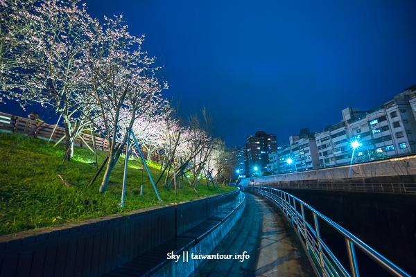 內湖景點推薦【樂活公園】東湖夜賞櫻花.親子共融遊具