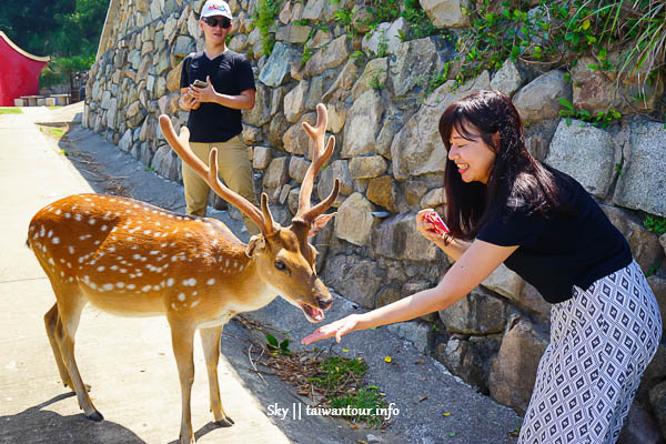 【馬祖最強攻略懶人包】旅遊行程、美食、景點和食尚玩家推薦2020