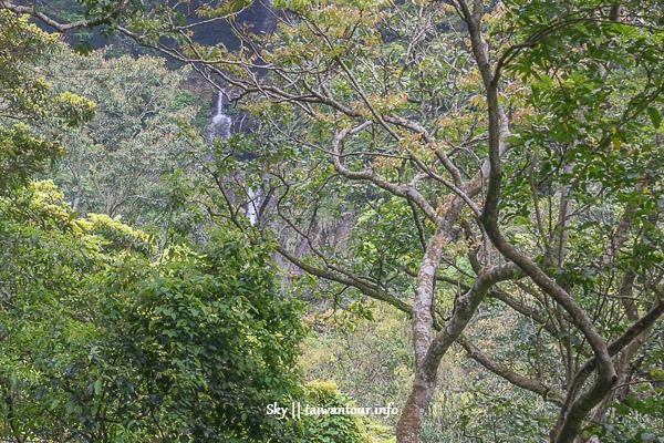 【鴛鴦谷瀑布群】新竹景點推薦尖石鄉秘境