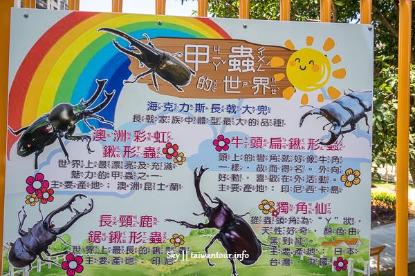 新北市親子景點-三峽甲蟲樂園【龍學公園】