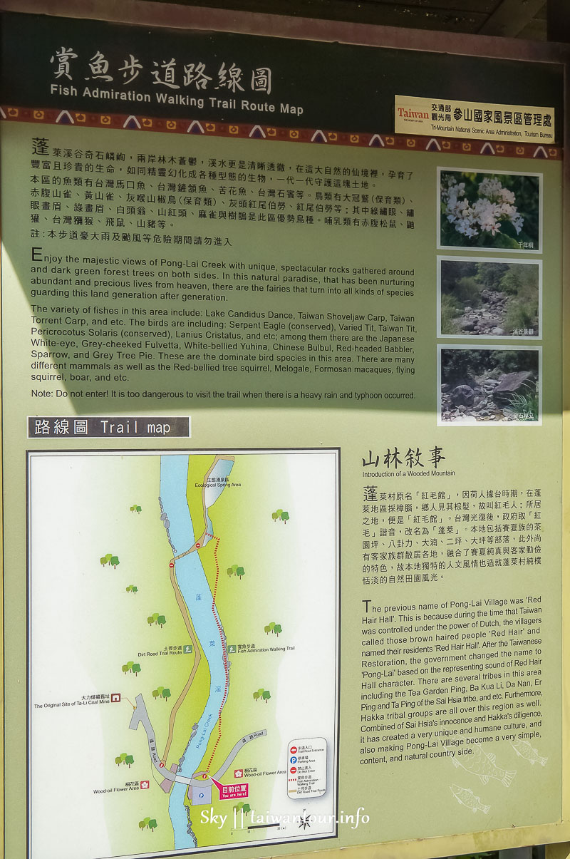 【蓬萊42湧泉】苗栗南庄秘境推薦景點四二份部落生態