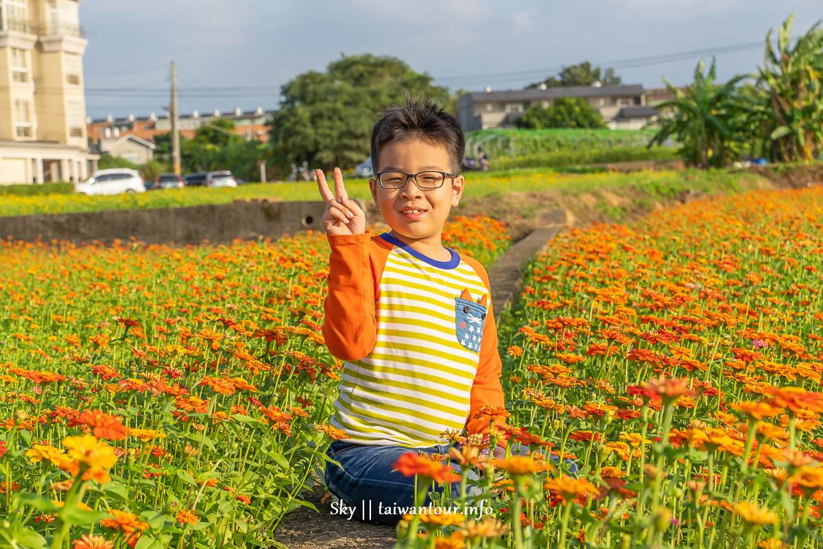 【2019桃園花彩節】免費景點時間.平鎮區地點.交通一日遊