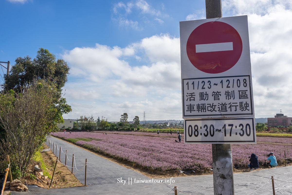 【2019桃園楊梅仙草花節】仙草花海浪漫來襲.交通攻略