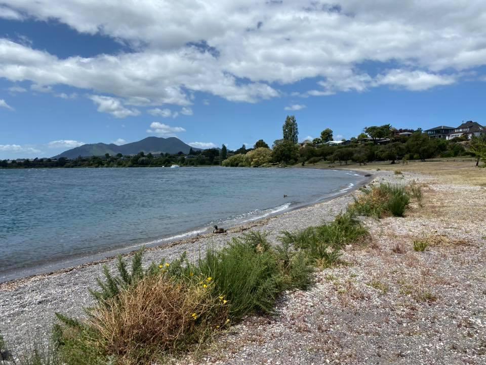紐西蘭必訪陶波湖【Taupo Spa Thermal Park】免費泉親子景點