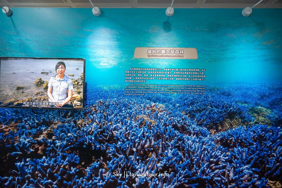 澎湖絕美秘境【南方四島特展開展】澎湖機場航廈2樓文化藝廊