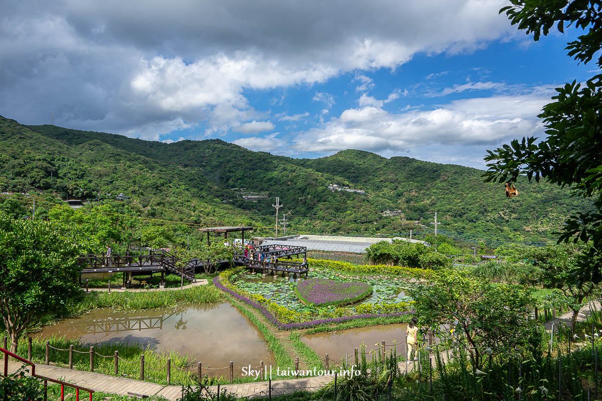 【白石湖吊橋步道】內湖親子景點交通.停車.怎麼去