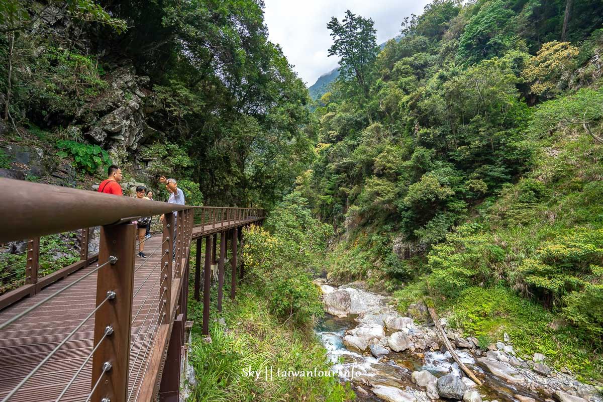 台中景點【八仙山國家森林遊樂區】台灣八景之一.親子踏青一日遊