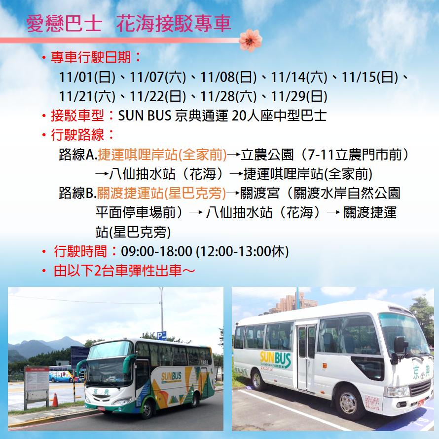 【2020關渡花海秘境】地址交通公車.怎麼去.花期.花況