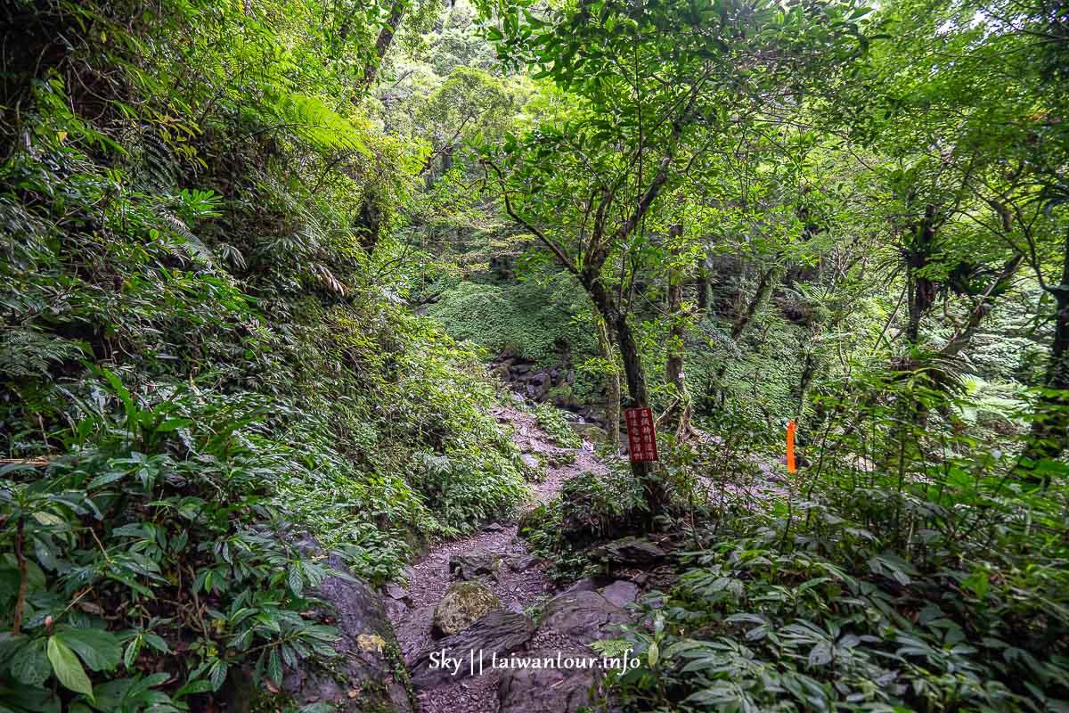 【三峽雲森瀑布】新北秘境廣告景點親子步道