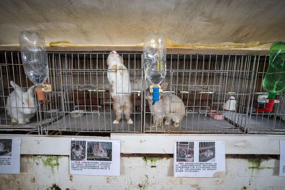 【可達休閒羊牧農場】宜蘭員山親子景點免門票
