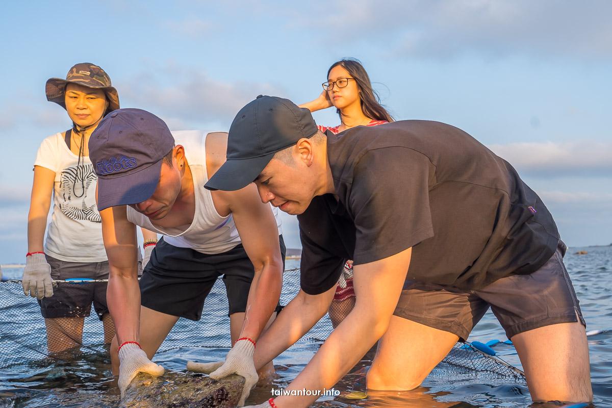 【澎湖石斑豐魚季】岐頭抱墩體驗&潮間帶導覽親子體驗
