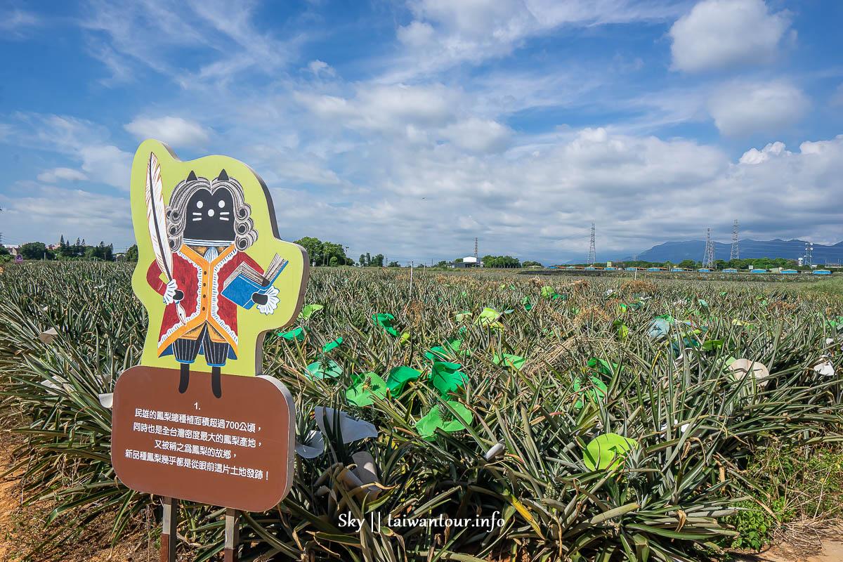 【旺萊山鳳梨文化園區】嘉義民雄免費親子景點伴手禮.附近景點