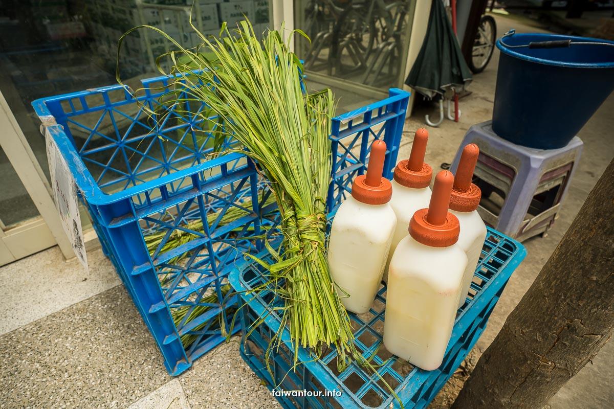 【大山休閒牧場】彰化花壇親子景點.鮮奶產品